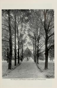 The path to the Noah Webster, now Frost Quad.