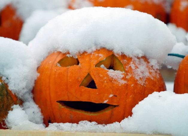 pumpkin-snow-2